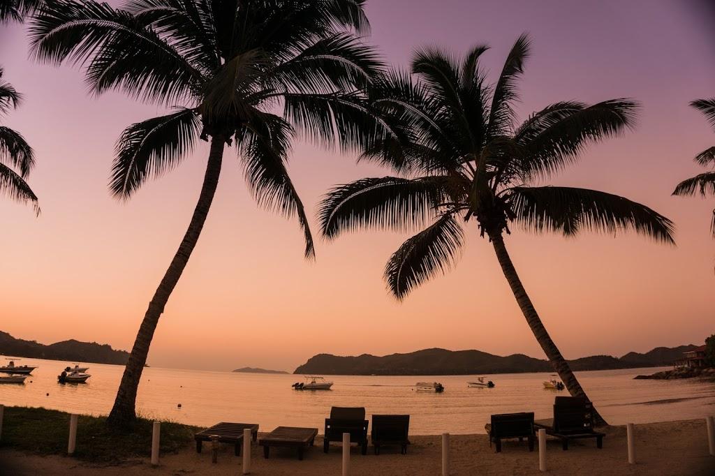 Zachód słońca na Seszelach palmy