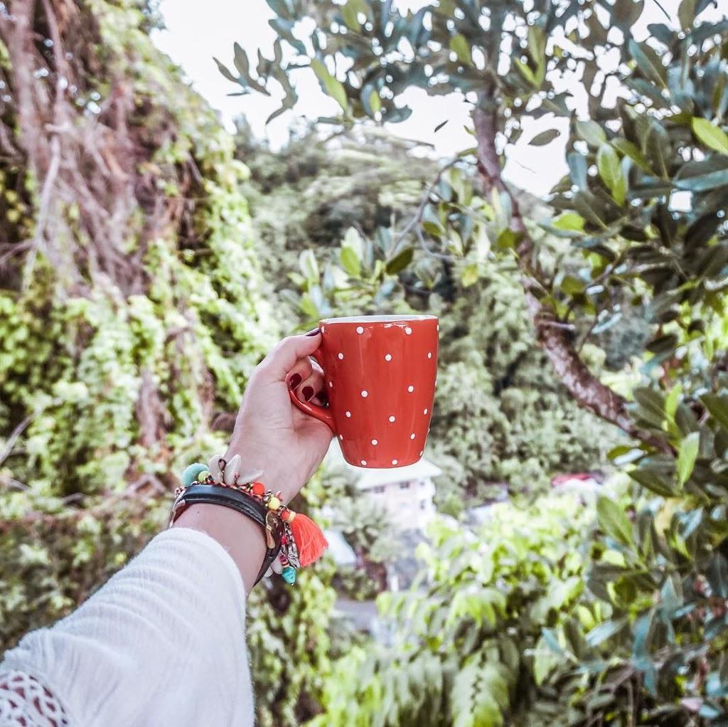 blog podróżniczy kawa na Seszelach kubek w dżungli