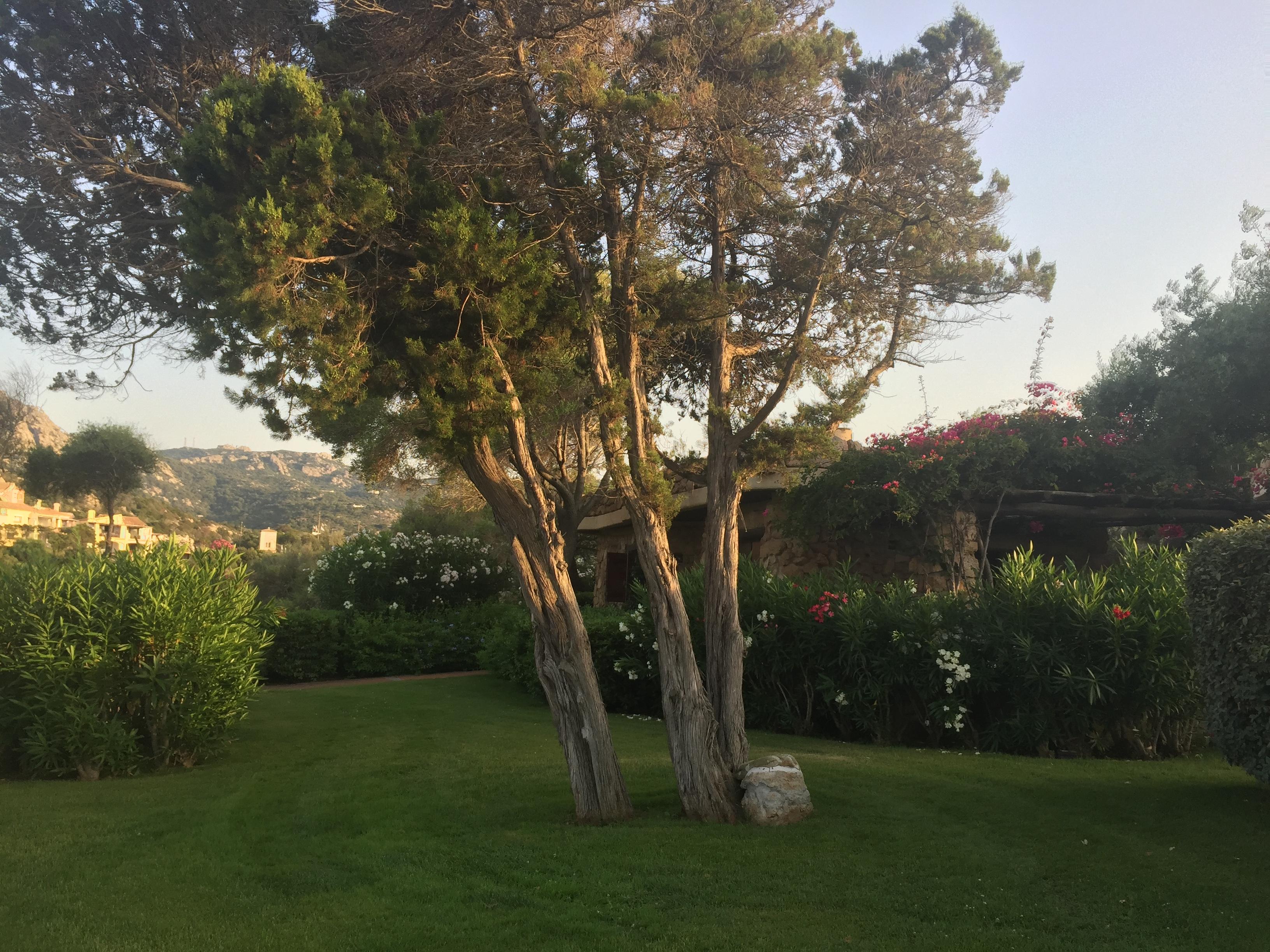 Porto Cervo Hotel Pitrizza Sardinia
