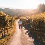 Graz Austria Die Südsteirische Weinstraße vineyard living in Austria working in Austria living abroad mieszkanie życie praca w Austrii polka w Austrii blog podróżniczy blog lifestyle