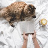 girl reading a book with the cat