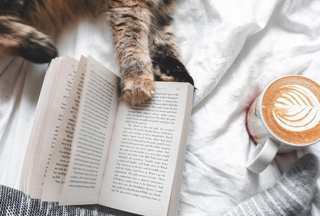 A girl reading a book, drinking coffee with latte art. There's a cat's paw touching the book.