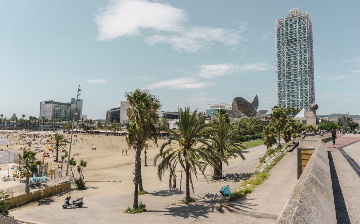 City beach with the palm trees in Barcelona, Spain.