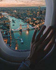 London Plane window view