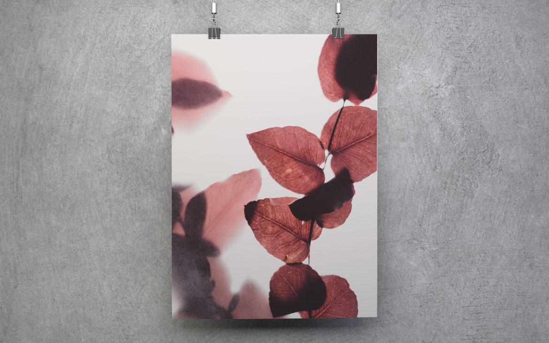 Darmowy plakat do ściągnięcia liście