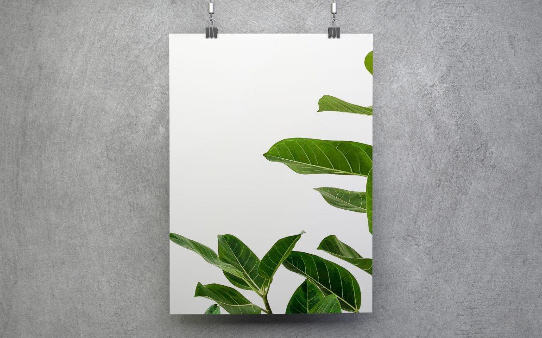 Darmowy plakat do ściągnięcia minimalistyczne liście