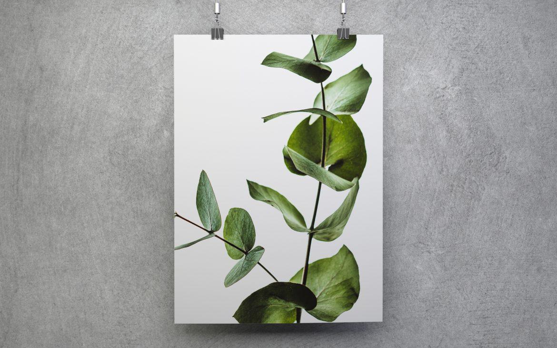 Darmowy plakat do ściągnięcia zielone liście